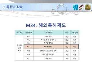 M34. 해외특허제도
