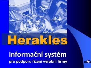 i nformační systém pro podporu řízení výrobní firmy