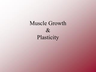 Muscle Growth & Plasticity