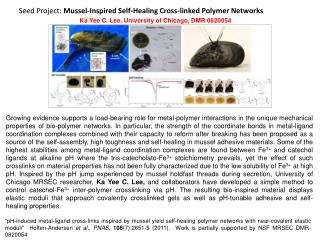 Seed Project:  Mussel-Inspired Self-Healing Cross-linked Polymer Networks