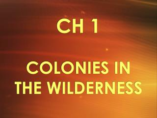 CH 1 COLONIES IN THE WILDERNESS