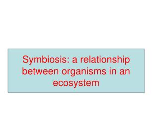 Symbiosis: a relationship between organisms in an ecosystem