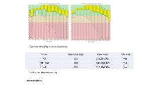 Overview of quality of deep sequencing