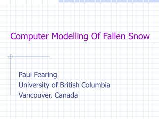 Computer Modelling Of Fallen Snow