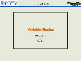 Variable Basics