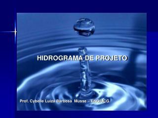 HIDROGRAMA DE PROJETO