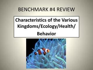 BENCHMARK #4 REVIEW