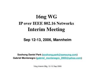 16ng WG IP over IEEE 802.16 Networks Interim Meeting