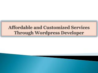 Affordable and Customized Services Through Wordpress Develop
