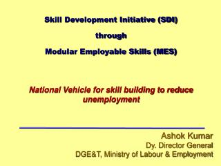 Skill Development Initiative SDI through  Modular Employable Skills MES    National Vehicle for skill building to reduce