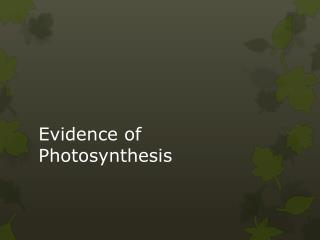 Evidence of Photosynthesis