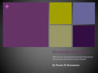 Photograph Dimensions