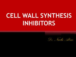 CELL WALL SYNTHESIS INHIBITORS