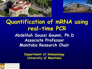 Abdelilah Soussi Gounni, Ph.D Associate Professor Manitoba Research Chair