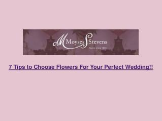 7 Tips to Choose Flowers For Your Perfect Wedding