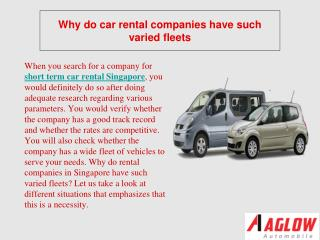Why do car rental companies have such varied fleets