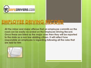 DMV Driving Record