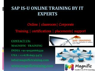 SAP ISU ONLINE TRAINING IN INDIA