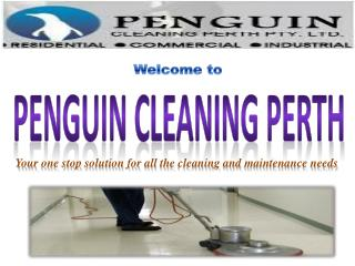 Penguin Cleaning Perth