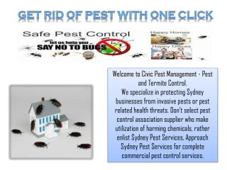 Get Rid of Pest With One Click