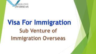How can an immigration consultant help you to get a Canadian