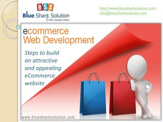 build attractive and appealing eCommerce website