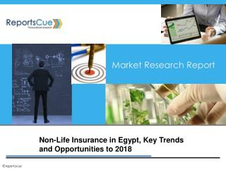 Non-Life Insurance in Egypt, Key Trends and Opportunities