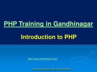 php brginer guide