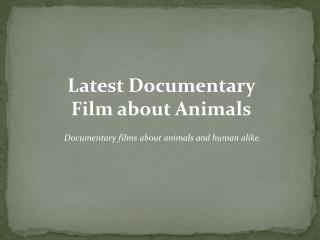 Animal Documentary