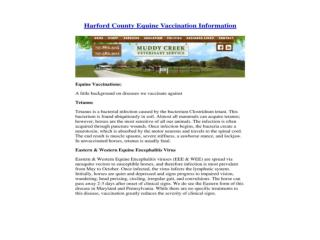 Vaccination Information Harford County Vet Maryland