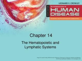 The Hematopoietic and Lymphatic Systems