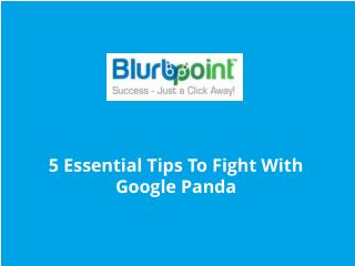 5 Essential Tips To Fight With Google Panda