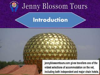 Holiday Packages in India from Delhi