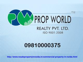 Commercial Property For Sale And Rent In Noida