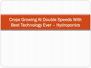 Crops Growing At Double Speeds With Best Technology Ever – H