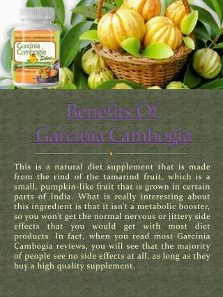 How Does Garcinia Cambogia Work