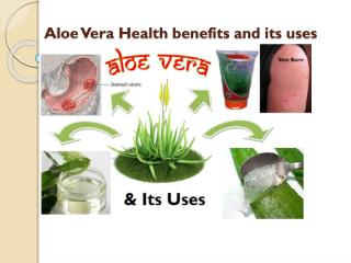 Aloe Vera and its uses