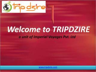 Domestic & International Travel Agents & Tour Operators