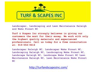 Landscaper, Landscaping and Lawn Maintenance Raleigh and Wak