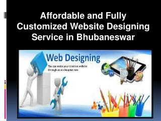 Affordable and Fully Customized Website Designing Service in