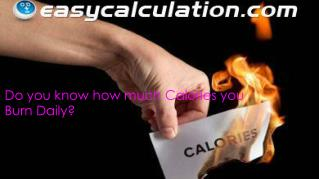 Do you know how much Calories you Burn Daily?