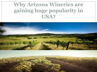 Arizona Wineries