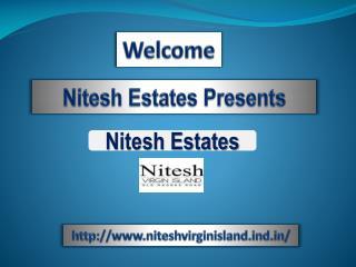 Nitesh Virgin Island