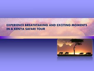 Experience Breathtaking and Exciting Moments in a Kenya Safa