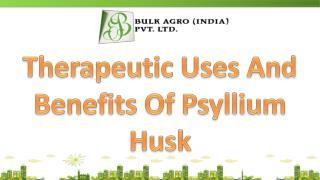 Therapeutic Uses And Benefits Of Psyllium Husk