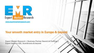 Professional European Market Entry Services