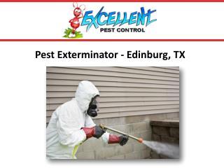 Pest Exterminator-Edinburg, TX