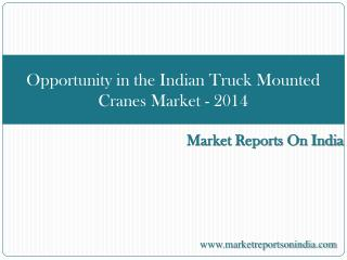 Opportunity in the Indian Truck Mounted Cranes Market - 2014
