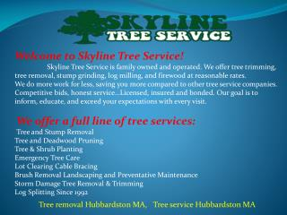 Tree, Stump Removal Service, Lot Clearing and Landscaping Hu