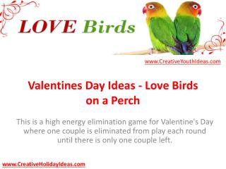 Valentines Day Ideas - Love Birds on a Perch